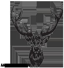 Brieža, mežacūkas, aļņa, bebra gaļa, medījumu veikals Rīgā Logo